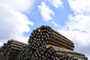 wood-post-3